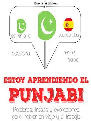 cover image of Estoy aprendiendo el punjabi
