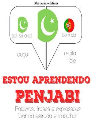 cover image of Estou aprendendo penjabi
