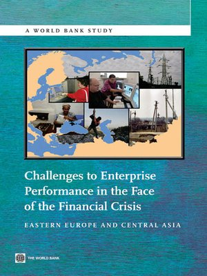 cover image of Challenges to Enterprise Performance in the Face of the Financial Crisis