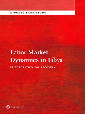 cover image of Labor Market Dynamics in Libya