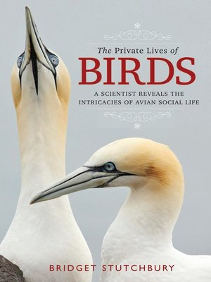 cover image of The Private Lives of Birds