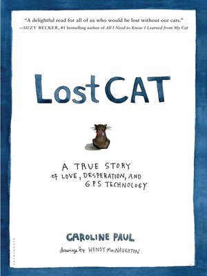 cover image of Lost Cat