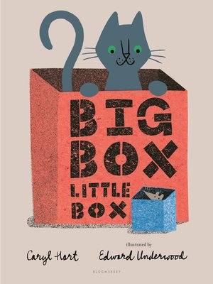 cover image of Big Box Little Box