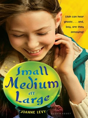 cover image of Small Medium at Large