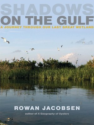 cover image of Shadows on the Gulf