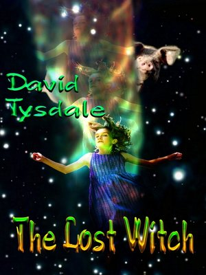 cover image of The Lost Witch