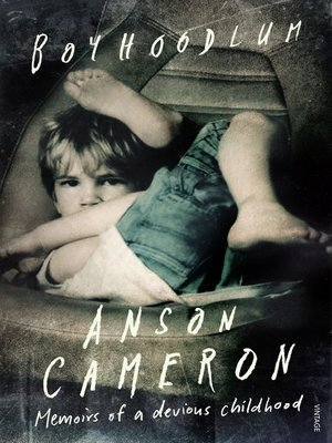cover image of Boyhoodlum