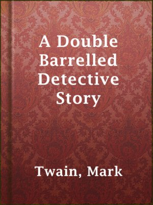cover image of A Double Barrelled Detective Story