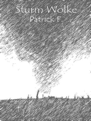 cover image of Sturm Wolke
