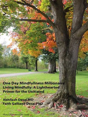 cover image of One Day Mindfulness Millionaire