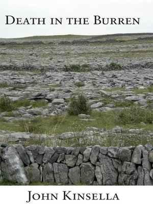 cover image of Death in the Burren
