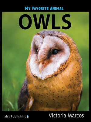 cover image of Owls