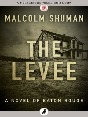 cover image of The Levee