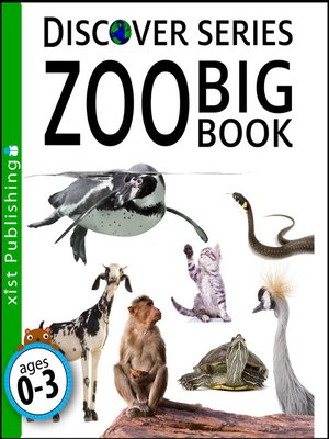 cover image of Zoo Big Book