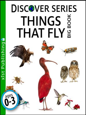 cover image of Things that Fly Big Book