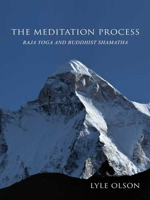 cover image of The Meditation Process