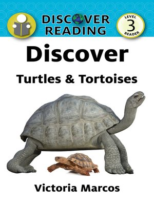 cover image of Discover Turtles & Tortoises