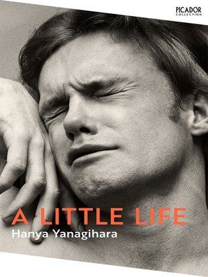 cover image of A Little Life