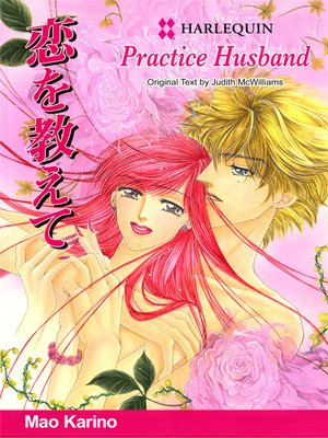 cover image of Practice Husband