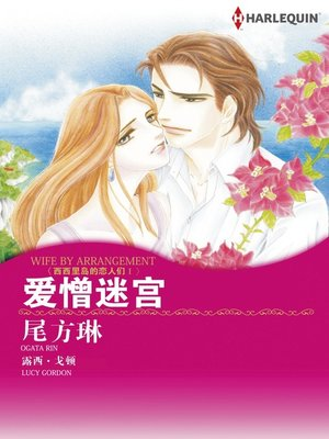 cover image of 爱憎迷宫