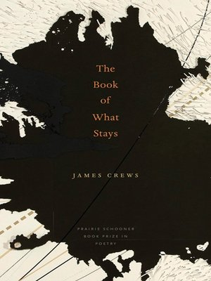 cover image of Book of What Stays