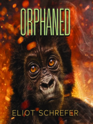 cover image of Orphaned
