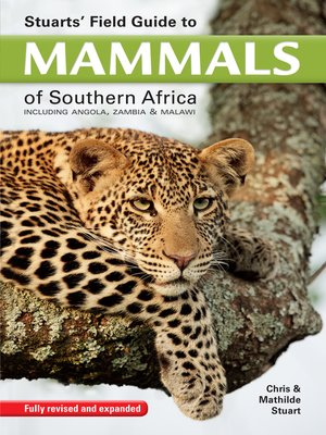 cover image of Stuarts' Field Guide to Mammals of Southern Africa