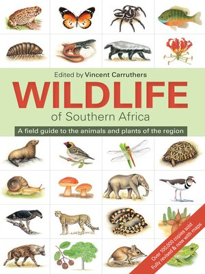 cover image of The Wildlife of Southern Africa