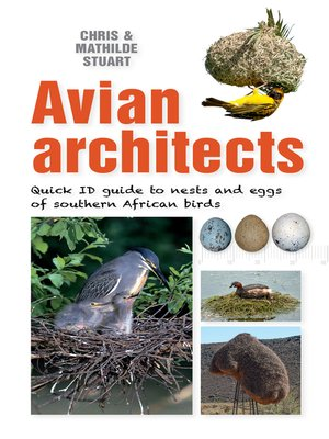 cover image of Quick ID Guide – Avian Architects