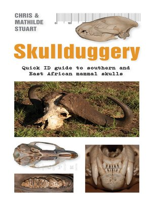 cover image of Skullduggery