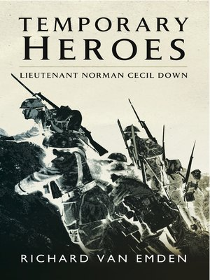 cover image of Temporary Heroes