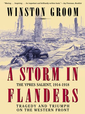 cover image of A Storm in Flanders