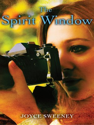 cover image of The Spirit Window