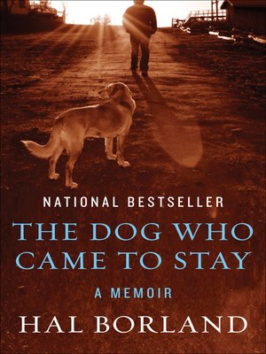 cover image of Dog Who Came to Stay