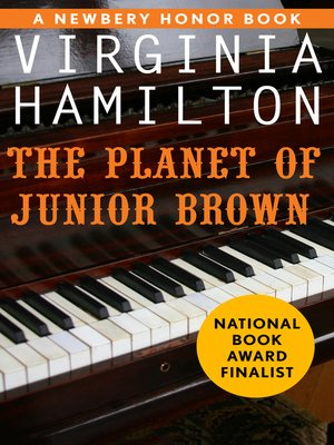 cover image of The Planet of Junior Brown