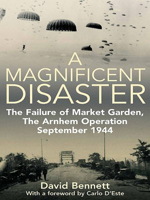 cover image of A Magnificent Disaster