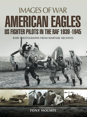 cover image of American Eagles