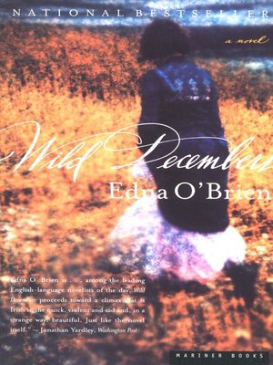 cover image of Wild Decembers