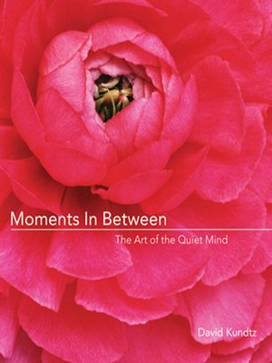 cover image of Moments in Between