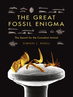 cover image of The Great Fossil Enigma