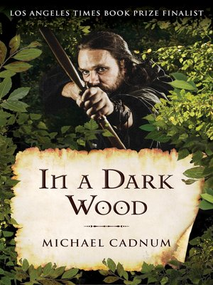 cover image of In a Dark Wood