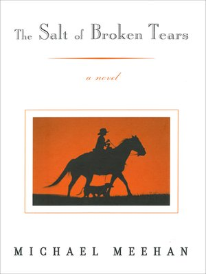 cover image of The Salt of Broken Tears
