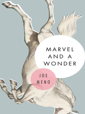 cover image of Marvel and a Wonder
