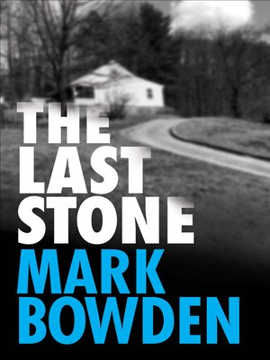 cover image of The Last Stone