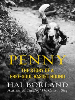 cover image of Penny