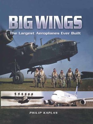 cover image of Big Wings