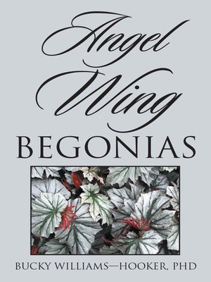 cover image of Angel Wing Begonias