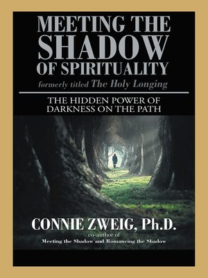 cover image of Meeting the Shadow of Spirituality