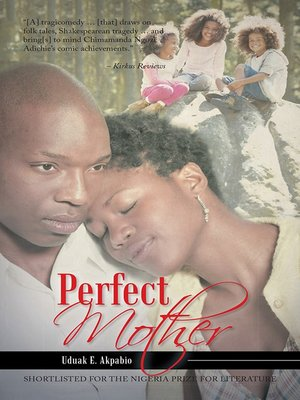 cover image of Perfect Mother