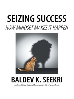 cover image of Seizing Success